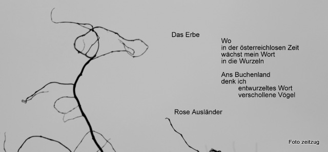 Entwurzeltes Wort Zeitzugcom Literarische Online Sammlung